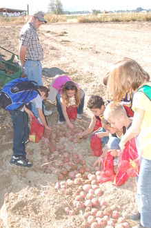 Ag in the Classroom, Farm to School, Ag Days