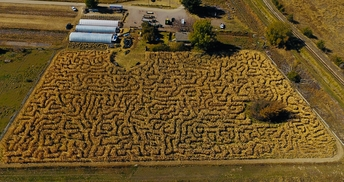 Swore Farms, Pocatello Corn Maze